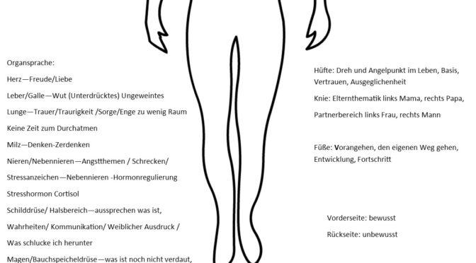 Körpersprache  der Energiearbeit